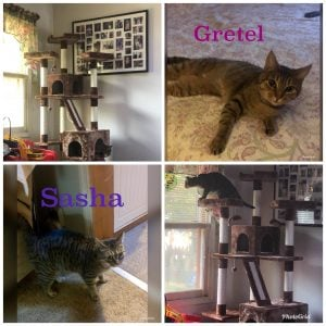 Gretel and Sasha